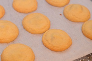 The baked cookies looks plain Jane. A coating of icing will take care of that.